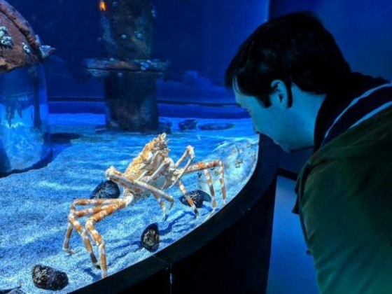 Wildlife wonderful at Springfield aquarium