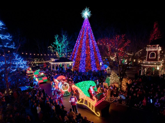 Branson Bulletin: Christmas Trees