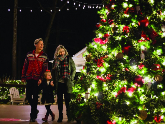 Branson Bulletin: Christmas Trees