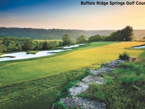 Branson Bulletin: Golf Accolades