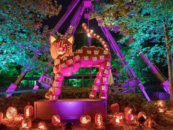 It's (Almost) Fall, Y'all! Silver Dollar City heats up for cool events