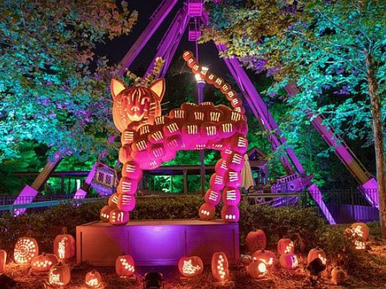 Crafts, Cowboys And Pumpkins Galore: Silver Dollar City celebrates harvest season