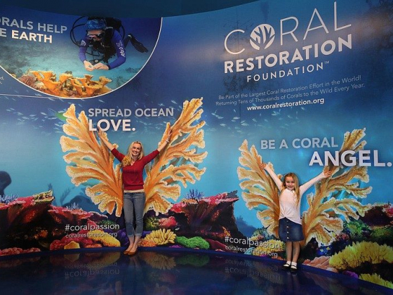 A Peek Into The Deep: New aquarium brings sea creatures to Branson
